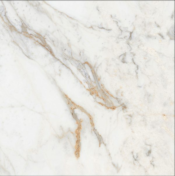 Total Tile and Bathrooms | Icon Gold | 60x60